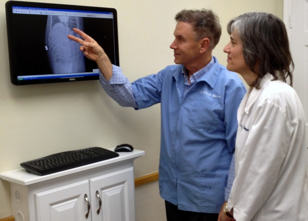 Dr. Blevins and Dr. Megremis Reviewing a Radiography